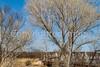 ACA - Rider(s) southwest of Tombstone, Arizona - D6-C3- - 72 ppi-2