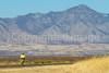 ACA - Riders southwest of Bisbee, Arizona, on US 92 - D6-C1-0167 - 72 ppi