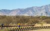 ACA - Rider(s) southwest of Tombstone, Arizona - D6-C3-0265 - 72 ppi