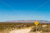 On way to Schlieffelin Monument outside Tombstone, Arizona - D6-C3-0473 - 72 ppi