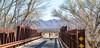 ACA - Rider(s) between Bisbee & Sierra Vista, Arizona - D6-C1-0190 - 72 ppi