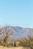 ACA - Whitewater Draw Wildlife Area near Bisbee, Arizona - D5-C1-0086 - 72 ppi