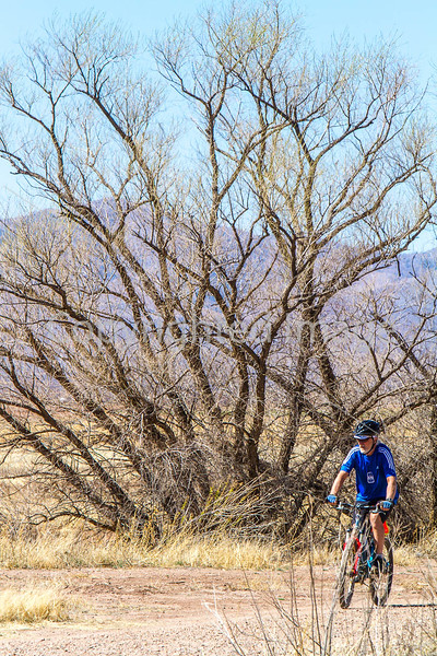 ACA - Whitewater Draw Wildlife Area near Bisbee, Arizona - D5-C1-0100 - 72 ppi