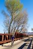 ACA - Rider(s) between Bisbee & Sierra Vista, Arizona - D6-C3-0282 - 72 ppi