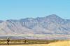 ACA - Riders southwest of Bisbee, Arizona, on US 92 - D6-C1-0183 - 72 ppi