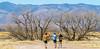 ACA - Whitewater Draw Wildlife Area near Bisbee, Arizona - D5-C1-0017 - 72 ppi