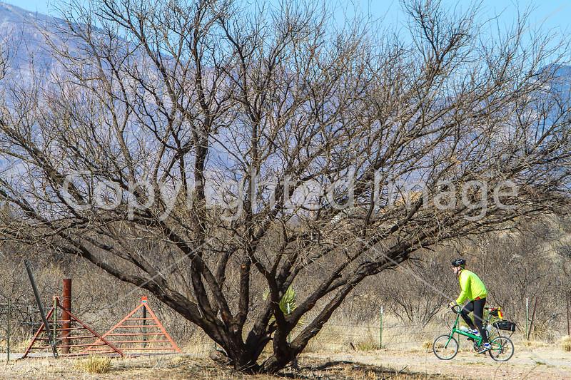ACA - Rider(s) between Bisbee & Sierra Vista, Arizona - D6-C1-0241 - 72 ppi