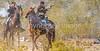 Battle of Picacho Peak - C1#2-0072 - 72 ppi-2