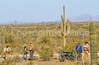 Battle of Picacho Peak - C1#1 -0065 - 72 ppi-2