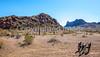 Battle of Picacho Peak - C2-0049 - 72 ppi-2