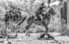Battle of Picacho Peak - C1#2-0159-2 - 72 ppi-2-3