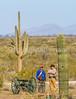 Battle of Picacho Peak - C1#1 -0065 - 72 ppi