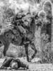 Battle of Picacho Peak - C1#2-0162-3 - 72 ppi