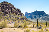 Battle of Picacho Peak - C3-0098 - 72 ppi