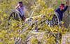 Battle of Picacho Peak - C1#1 -0058 - 72 ppi