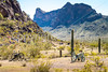 Battle of Picacho Peak - C3-0099 - 72 ppi