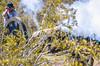 Battle of Picacho Peak - C1#1 -0040 - 72 ppi