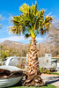 The Shady Dell Trailer Park in Bisbee, Arizona - D4-C3-0346 - 72 ppi