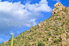 Saguaro National Park, Arizona - 8 - 72 ppi