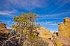 Grottoes Trail, Chiricahua Nat'l Mon in Arizona -  D7-C2#2  -0063 - 72 ppi