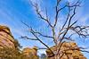 Grottoes Trail, Chiricahua Nat'l Mon in Arizona -  D7-C2#2  -0209 - 72 ppi