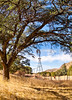 Chiricahua Nat'l Mon in Arizona -  D7-C2  -0115 - 72 ppi