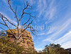 Grottoes Trail, Chiricahua Nat'l Mon in Arizona -  D7-C2#2  -0204 - 72 ppi