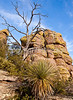 Grottoes Trail, Chiricahua Nat'l Mon in Arizona -  D7-C2#2  -0205 - 72 ppi-2