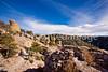 Chiricahua Nat'l Mon in Arizona -  D7-C2  -0136 - 72 ppi