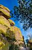 Grottoes Trail, Chiricahua Nat'l Mon in Arizona -  D7-C2#3  -0063 - 72 ppi