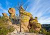 Grottoes Trail, Chiricahua Nat'l Mon in Arizona -  D7-C2#3  -0016 - 72 ppi