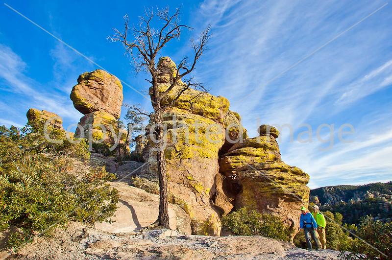 Grottoes Trail, Chiricahua Nat'l Mon in Arizona -  D7-C2#3  -0022 - 72 ppi