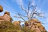 Grottoes Trail, Chiricahua Nat'l Mon in Arizona -  D7-C2#2  -0210 - 72 ppi