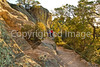 Grottoes Trail, Chiricahua Nat'l Mon in Arizona - D5-C3-0144 - 72 ppi-2