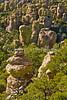 Chiricahua Nat'l Mon in Arizona -  D7-C3 -0176 - 72 ppi
