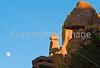 Chiricahua Nat'l Monument, Arizona - D5-C1 -0021 - 72 ppi