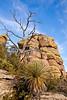 Grottoes Trail, Chiricahua Nat'l Mon in Arizona -  D7-C2#2  -0205 - 72 ppi
