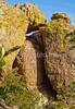 Grottoes Trail, Chiricahua Nat'l Mon in Arizona -  D7-C3 -0178 - 72 ppi