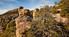Chiricahua Nat'l Mon in Arizona -  D7-C2  -0147 - 72 ppi