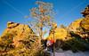 Grottoes Trail, Chiricahua Nat'l Mon in Arizona - D5-C2 -0091 - 72 ppi