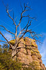 Grottoes Trail, Chiricahua Nat'l Mon in Arizona -  D7-C2#3  - - 72 ppi
