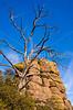 Grottoes Trail, Chiricahua Nat'l Mon in Arizona -  D7-C2#3  - - 72 ppi