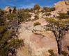 Chiricahua Nat'l Mon in Arizona -  D7-C2  -0134 - 72 ppi-3
