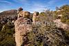 Chiricahua Nat'l Mon in Arizona -  D7-C2  -0132 - 72 ppi