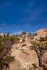Chiricahua Nat'l Mon in Arizona -  D7-C2  -0134 - 72 ppi-2