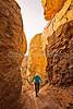 Grottoes Trail, Chiricahua Nat'l Mon in Arizona -  D7-C2#2  -0031 - 72 ppi