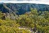 Chiricahua Nat'l Mon in Arizona -  D7-C3 -0173 - 72 ppi
