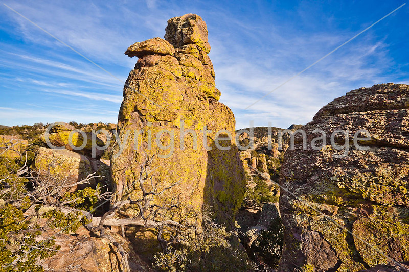 Grottoes Trail, Chiricahua Nat'l Mon in Arizona -  D7-C2#2  -0158 - 72 ppi