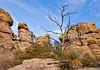 Grottoes Trail, Chiricahua Nat'l Mon in Arizona -  D7-C2#2  -0206 - 72 ppi