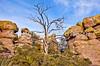 Grottoes Trail, Chiricahua Nat'l Mon in Arizona -  D7-C2#2  -0211 - 72 ppi